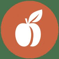 Programa de Nutricion