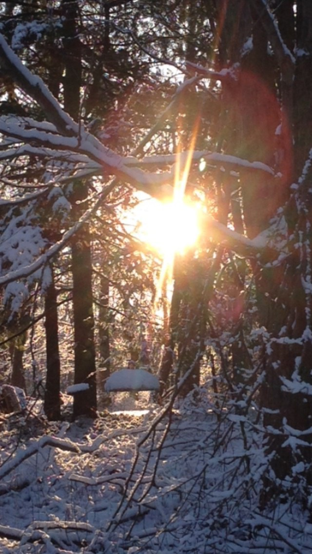Winter Solstice - Day Full of Darkness - Turn Inside, Find Your Light