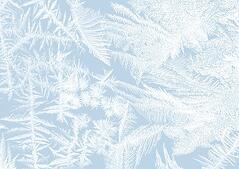 Winter Snow Cancellations