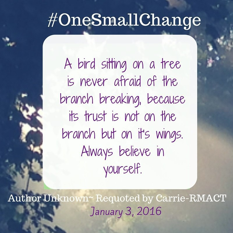 One_Small_Change_Jan_3_2016.jpg