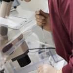 Embryo Screening