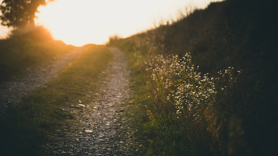 Fertility Hope – It's All About Your Outlook