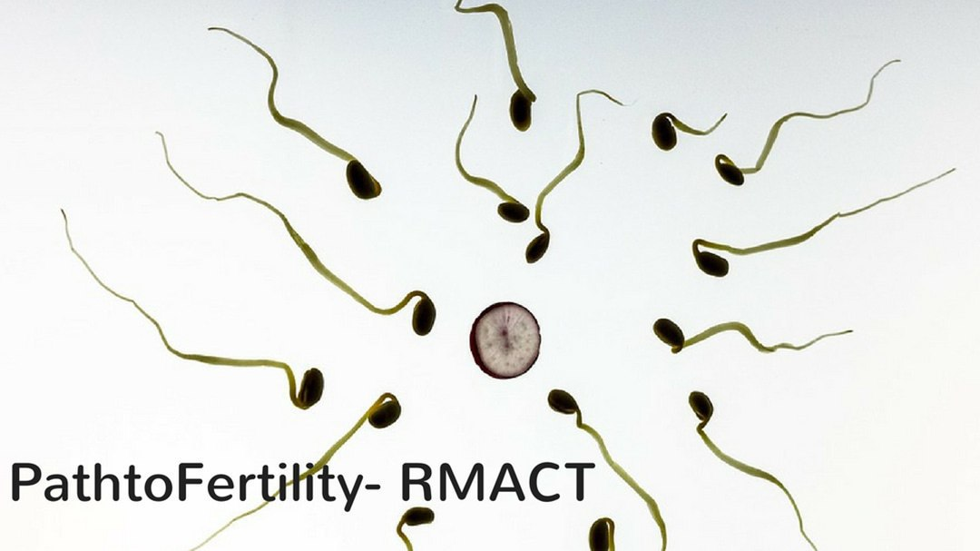 Male Factor Infertility: When It's All About the Sperm