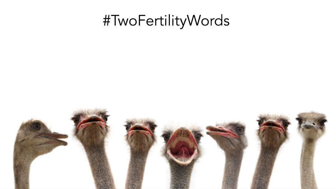 Resilience & Humor During Fertility Treatment   #TwoFertilityWords